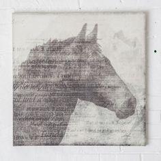 Vintage Horsehead Canvas