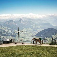 Im ❤ der Schweiz 🇨🇭 ⠀⠀⠀⠀⠀⠀⠀⠀⠀⠀⠀⠀⠀⠀⠀⠀⠀⠀⠀⠀⠀⠀⠀⠀⠀⠀⠀⠀⠀⠀⠀⠀⠀⠀⠀⠀⠀⠀⠀⠀⠀⠀⠀⠀⠀⠀⠀⠀⠀⠀ Auf die Königin der Berge 👑 führen viele Wege. Ein willkommenes Konditionstraining, das mit einer wunderbaren Aussicht belohnt wird. Runter geht es knieschonend mit der Bahn. ⠀⠀⠀⠀⠀⠀⠀⠀⠀⠀⠀⠀⠀⠀⠀⠀⠀⠀⠀⠀⠀⠀⠀⠀⠀⠀⠀⠀⠀⠀⠀⠀⠀⠀⠀⠀⠀⠀⠀⠀⠀⠀⠀⠀⠀⠀⠀⠀⠀⠀ Wie unser Blogname vermuten lässt, wandern wir lieber als nuff. Bergab nutzen wir gerne eine Bahn 🚠 falls vorhanden. Geht es euch genauso? Oder wandert ihr lieber bergab? Adelboden, Mountains, Fall, Nature, Travel, Rock Path, Swiss Alps, Naturaleza, Voyage