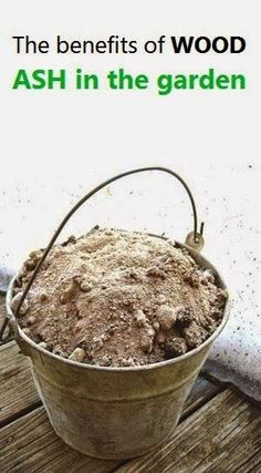 Gardening Compost - Gardening Tips - Adding Ash to your GardenHave you had a lot of fires in your wood burning stove or fireplace Garden Compost, Veg Garden, Garden Soil, Vegetable Gardening, Biodynamic Gardening, Garden Urns, Potager Garden, Green Garden, Edible Garden