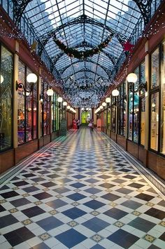 Happiness is the cheapest thing in the world when we buy it for someone else.  --Paul Fleming .....Passage des Princes, Paris