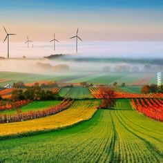WindMill Wallpaper Landscape Nature Wallpapers) – Wallpapers For Desktop