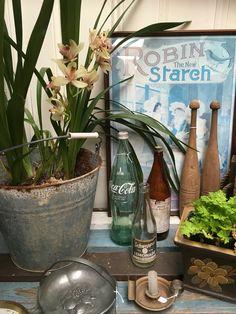 The garden room at Rust Emporium