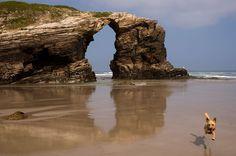 Los acantilados de hasta 32 metros de altura dan nombre a la Playa de las Catedrales Cuando la marea esté baja, piérdete por sus cúpulas rocosas esculpidas por el mar y el viento. #SienteGalicia #Galicia #MariñaLucense     ➡ Descubre más en http://www.sientegalicia.com/