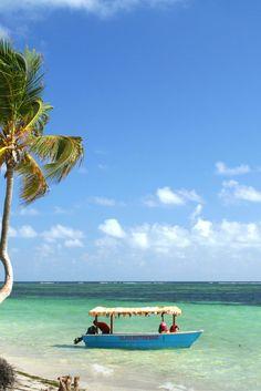 Heb jij ook zo'n zin om volop te genieten en even ontsnappen uit het gewone leven? Dan moet je snel naar deze deal kijken! Op Curaçao kan je ultiem genieten van de prachtige stranden en de heerlijke zon. Verder kan je ook heerlijk genieten in een luxe hotel. Met wie ga jij hierheen? https://ticketspy.nl/?p=130925