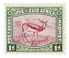 Springbok - Wikipedia, the free encyclopedia