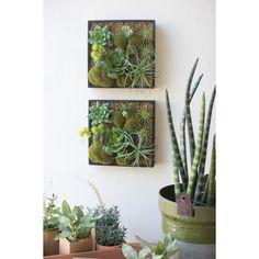 Kalalou Artificial Succulent Garden Wall Hanging With Wooden Box