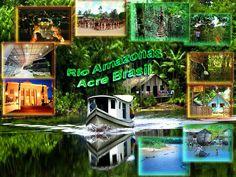 https://flic.kr/p/dgXQGk | [Amazonia][Brasil][Acre] Cover | Rio Amazonas Acre Brasil