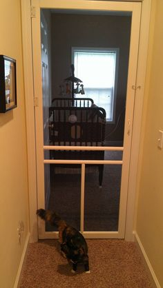Screen door on babies room so cat cannot enter but we can still hear the baby.