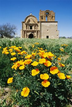 Tumacacori, Arizona is home to the Franciscan mission built in 1795 and the site has been converted into a National Historic Park with a visitor center where you can learn all about the mission.