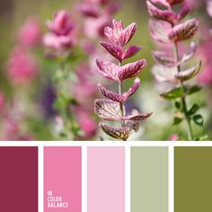 Light, summer palette. This light and weightless, like a butterfly. Soft pastel shades of green marsh and light pink are doing fine and elegant range. Dark red and bright pink energized and dynamic. In such a color composition will look perfectly decorated living room, bedroom, children's room. Also suitable for gamma summer wardrobe.