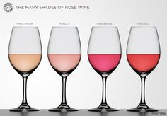 Rosé wine chart - blush wines made from different varietals - the many shades of rosé - winefolly - pinot noir, merlot, grenache, malbec Sauvignon Blanc, Cabernet Sauvignon, Pinot Noir, Guide Vin, Wine Guide, Chenin Blanc, Art Du Vin, Wine Facts, Wine Glass