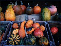 Zurich Autumn 2013 http://www.newinzurich.com