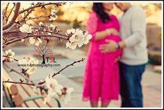 cherry blossom maternity photo