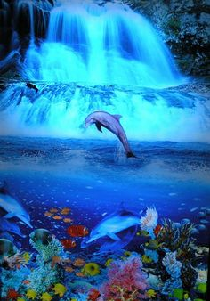 Tropical Waterfalls | Dolphin Tropical Waterfall Moving Picture | Flickr - Photo Sharing!