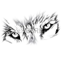fox head: Wolf