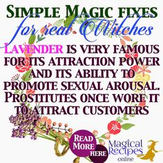 Herbal Magic Analysis, Correspondences, correlations,  magical attributes, abilities and powers of Lavender, the herb of Attraction and Love