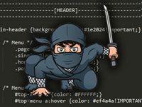 css-ninja-1200x627 Web Design Basics, Cheap Web Hosting, Ecommerce Hosting, Ninja, How To Become, Ninjas