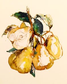 Pear by J.Heloise.  (Never realized how much I loved pears till I started drawing them!).  more art at www.jheloise.com