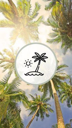 Instagram Beach, Instagram Logo, Instagram Story, Neon Wallpaper, Iphone Wallpaper, Succulents Wallpaper, Beach Icon, Summer Icon, Insta Icon