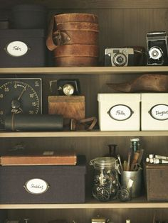 cute organization mixed with old cameras