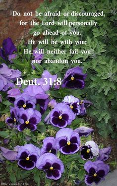 Do not be afraid or discouraged, for the Lord will personally go ahead of you; He will neither fail you nor abandon you. Deuteronomy 31:8