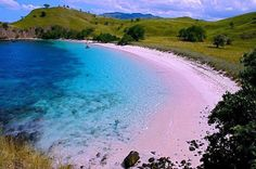 Pink beach - Komodo Island - Indonesia the pink sandy beaches there are only 7 in the world, one of them on the island of Komodo - Indonesia Beaches In The World, Places Around The World, Around The Worlds, Komodo National Park, National Parks, Rosa Strand, Komodo Island, Pink Sand Beach, Bahamas