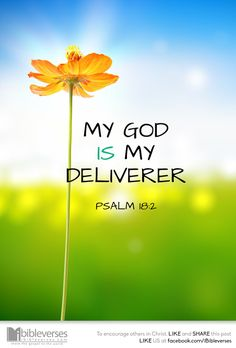 The Lord is my rock, and my fortress, and my deliverer; my God, my strength, in whom I will trust; my buckler, and the horn of my salvation, and my high tower. I will call upon the Lord, who is worthy to be praised: so shall I be saved from mine enemies. (Psalms 18:2, 3 KJV)