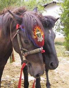 Western éperons Breast collar Tack noir frange avec outils en Cuir Horse Bridle