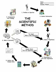 Musings Of A Primary Teacher: Scientific Method Printable