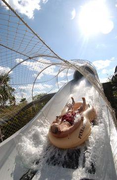 Five of the Coolest Water Slides at Walt Disney World Resort - Crush N' Gusher At Typhoon Lagoon tami@goseemickey.com