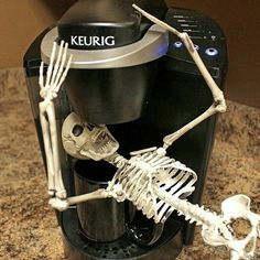 Carcass-in-the-Coffee-Maker --- take THAT, you silly elf-on-a-shelf! This would be fun to Do, a skeleton on the shelf, for Halloween.
