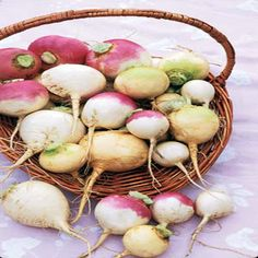 Cool weather turnip crops make for delicious fall side dishes. No other vegetable gives you the choice between nutritious greens or juicy roots that rival carrots for crunchiness, plus it's easy to store perfect roots in a cool basement all the way through the first half of winter. Learn to grow and cook with this root crop that deserves our respect. Originally published as