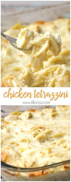Easy and delicious Cheesy Chicken Tetrazzini - a family favorite dinner meal! Easy and delicious Cheesy Chicken Tetrazzini - Chicken and pasta in a creamy sauce with lots of flavor. It's a family favorite dinner meal! Think Food, Food For Thought, Love Food, Chicken Tetrazzini Recipes, Chicken Tetrazinni, Chicken Tetrazzini Casserole, Cheesy Chicken Casserole, Turkey Tetrazzini Easy, Gastronomia