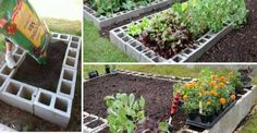 Make A Raised Bed Garden Out Of Cinder Blocks