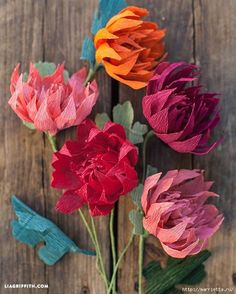 Paper flowers of crepe paper can be supplemented with decorative compositions interior decoration beloved home, they can decorate a gift box, and apply for registration of a wedding celebration in the banquet hall. Below you will find a description and templates for printing. Good luck to everyone)