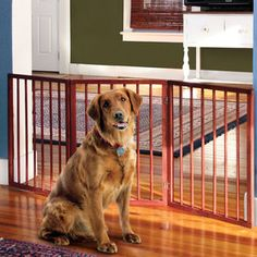 Folding Wooden Pet Gate now featured on Fab.
