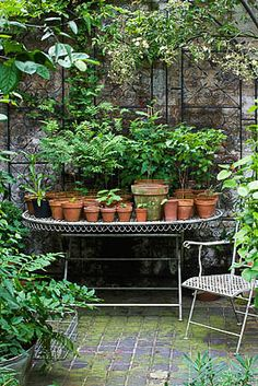 A charming display of terra cotta pots. Photography: Clive Nichols.