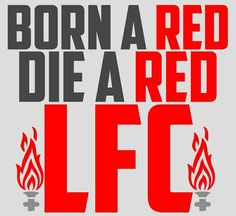 The LFC supporter motto Liverpool Tattoo, Fc Liverpool, Liverpool Football Club, Football Fans, Liverpool Fc Wallpaper, This Is Anfield, Toronto Fc, You'll Never Walk Alone, Its My Bday