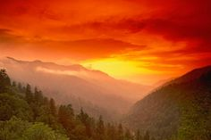 Beauty of the Great Smoky Mountains