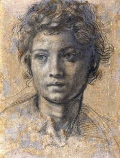 Andrea del Sarto - head of St. John the Baptist in black chalk.