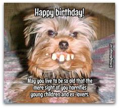 Need happy birthday wishes and birthday quotes? Find out exactly what to say with happy birthday messages. Best Happy Birthday Quotes, Birthday Wishes For Men, Happy Birthday Typography, Happy Birthday Best Friend, Funny Happy Birthday Wishes, Funny Happy Birthday Pictures, Birthday Greetings, Men Birthday, Humor Birthday