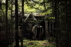 old cottage in the woods...crumbling away...