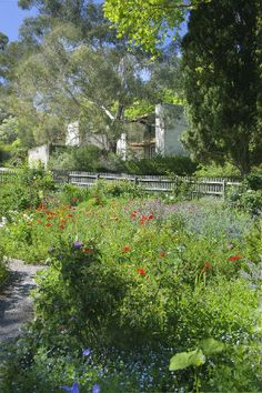 Kitchen Gardens Gardens, Kitchen, Cuisine, Outdoor Gardens, Kitchens, Garden, Stove, Yards, Cucina