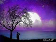 A summer breeze. Moonlight shines down through the trees.Your touch, like fire sears my soul. The entangled shadows. Yours and mine. I have to see you 1 more time. Good Night Wallpaper, Love Wallpaper, Wallpaper Backgrounds, Beautiful Wallpaper, Wallpapers Amor, Wallpapers Android, Miss U Love, Romantic Love Images, Beautiful Pictures