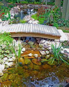 Backyard pond bridge   Flickr - Photo Sharing!