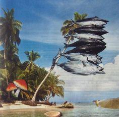 """""""Paradise now"""" collage by Eli Diallo"""