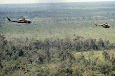 Vietnam War 1st CAV Cobra & LOH Hunter Killer Team