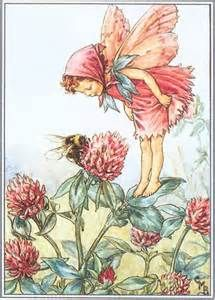 FLOWER FAIRIES/BOTANICALS: The Red Clover Fairy; This is an original vintage Cicely Mary Barker Flower fairies colour print. It is not a modern reproduction, approximate size x x 3 inches Cicely Mary Barker, Flower Fairies, Vintage Prints, Vintage Art, Vintage Images, Vintage Sewing, Clover Flower, Bee Flower, Grass Flower