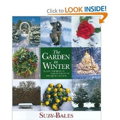 The Garden in Winter: Plant for Beauty and Interest in the Quiet Season - Suzy Bales
