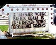 Dumb chickens.